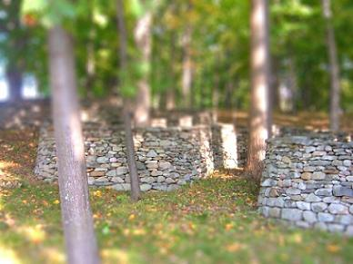 tilt shift Andrew Goldsworthy